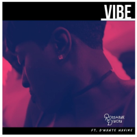 Romaine Dixon Shares New Single, 'Vibe' + Video
